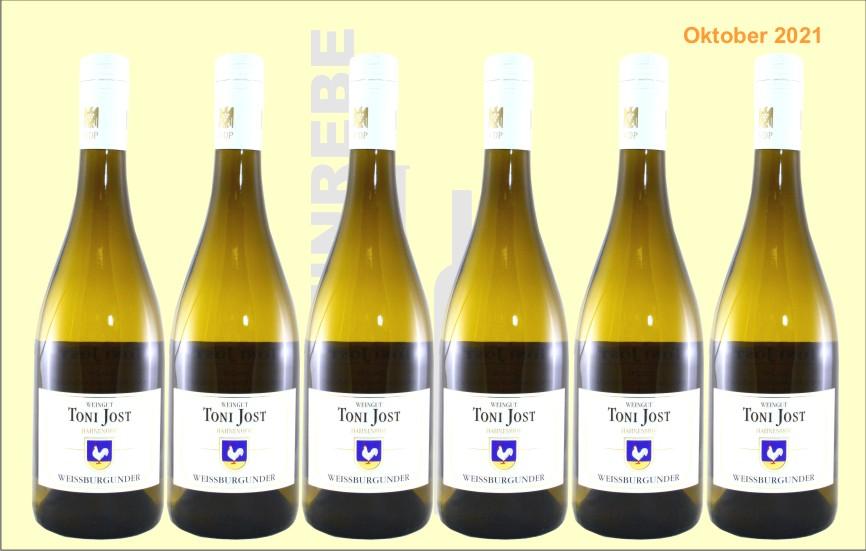 6er Karton 2020 Weissburgunder trocken, Weingut Toni Jost